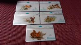 SET Lessive Animals 5 Cards S 81-S 82-S 83-S84-S85 Used Rare