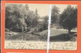 MONDORF-les-BAINS  -  Parc  -   NELS Sie 3  N° 10 - Mondorf-les-Bains