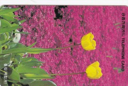 Korea, MO9610138, Flowers, Tulip, 2 Scans. - Corea Del Sud