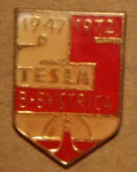 Nikola TESLA Company Czechoslovakia Electronic Industry Banska Bystrica Pin Badge - Markennamen