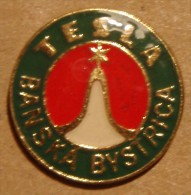 Nikola TESLA Company Czechoslovakia Electronic Industry Banska Bystrica Pins Badges - Markennamen