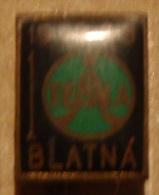 Nikola TESLA Company Czechoslovakia Electronic Industry Blatna Pin Badge - Trademarks