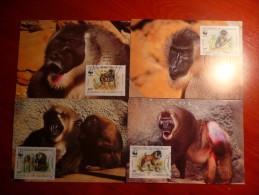 WWF Cameroon Kamerun Cameroun Drill 1988 4 CM MK MC Maxi Maximum Cards Maxicard Maximumkarte - Maximumkarten