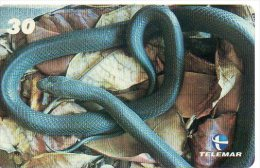 Serpent  Reptile Snake Télécarte Phonecard  Telefonkarten F177 - Oerwoud