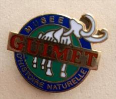 MUSEE HISTOIRE NATURELLE GUIMET - Badges
