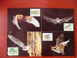 WWF Bulgaria Bulgarie Bulgarien Chauve-souris Bats Fledermäuse 1989 CM MK MC Maxi Maximum Cards Maxicard Maximumkarte - Maximumkarten