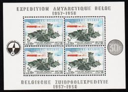 1957. BELGISCHE ZUIDPOOLEXPEDITIE 1957-1958. BLOCK.  (Michel: BLOCK 25) - JF193051 - Blocs 1924-1960