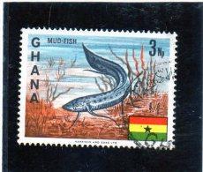 1967 Ghana - Mud-fish - Fishes