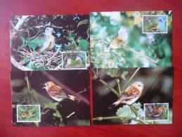 WWF Cook-island Birds Of The Cook Islands Vögel 1989 CM MK MC Maxi Maximum Cards Maxicard Maximumkarte - Maximumkarten