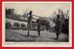 AFRIQUE -- CENTRAFRICAINE République -- Haute Sanga - Retour De La Chasse Au Gorille - Central African Republic