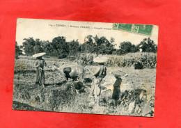 TONKIN   / VIET NAM   1905  INDOCHINE  ETHNIQUE  PAYSAN AU TRAVAIL   CIRC OUI EDIT - Viêt-Nam