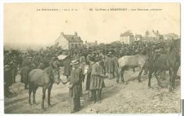 DOMFRONT  La Foire à DOMFRONT - Les Chevaux Solitaires - Domfront