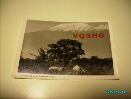 QSL RADIO CARD , TANGANYIKA  BRITISH EAST AFRICA . KILIMANJARO , O - Tanzania