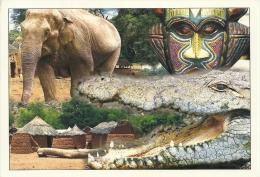Eléphant Olifant Elephant / Crocodile Krokodil / Benin - Éléphants