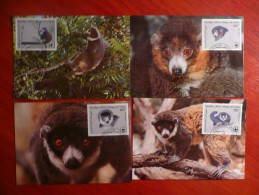 WWF Comoros Komoren Comoro Comores Mongoose Lemur 1987 CM MK MC Maximum Cards Maxicard Maximumkarte - Maximum Cards