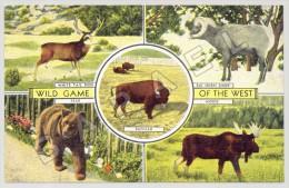 Milwaukee (Etats-Unis) - Wild Game Of The West (JS) - Autres