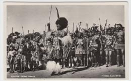 African Tribal Dance - Non Classificati