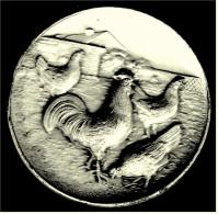 Preis-Plakette Geflügelzucht  1964  -  Ca. 50 Mm Durchmesser - Vereinswesen