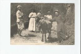 L'ASCENSION A SHEMBAGANOUR (MULETS ET ANIMATION) 6 - Inde