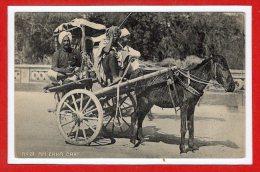 ASIE - INDE -- An Ekka Cart - India