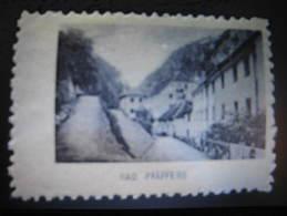 BAD PFAFFERS Vignette Poster Stamp Label Switzerland Suisse - Sin Clasificación