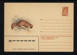 USSR 1980 Postal Cover Fauna Siberian Weasel (011) - Autres