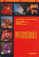 Documentation Scolaire - 1979 - Les Invertébrés - éditions ARNAUD - Animaux