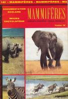 Documentation Scolaire - 1979 - Les Mannifères - éditions ARNAUD - Animaux