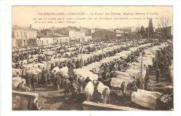 VILLEFRANCHE DU LAURAGAIS - HAUTE GARONNE - LE FIERAL DES BIOOUS - MARCHE AUX BOEUFS - France