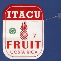 # PINEAPPLE ITACU Round Edges Calibre 7 Fruit Tag Balise Etiqueta Anhanger Ananas Pina Costa Rica - Fruits & Vegetables