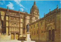 (AKM262) SALAMANCA. UNIVERSIDAD. PATIO DE LAS ESCUELAS - Salamanca
