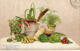 Fabrique De Conserves SEETHAL à SEON (Argovie) - Fruits Et Légumes - écrite En 1920 Voir Scans - AG Argovie