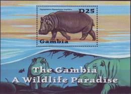 (  1413 )  The Gambia - Fauna - Marine Mammals - Hippoptamus. - Marine Mammals