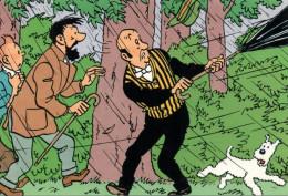 Carte Tintin Kuifje Tim HERGE N° Q806 : L´affaire Tournesol - Comics