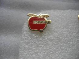 Pin´s Pomme, Pommier - Alimentazione