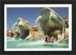 United Arab Emirates UAE Abu Dhabi Picture Postcard Waterpark  View Card - Dubai
