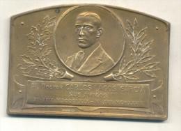 AL DR. CARLOS LAGOS GARCIA SUS AMIGOS 1880-1928 PLAQUETA GRABADOR CONSTANTE ROSSI EN EL ANVERSO RARE TBE - Firma's