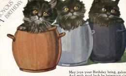 Cat Card -  A Joyous Birthday.   1931. - Chats