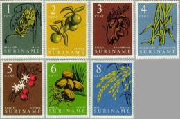 Suriname 1961 Inheemse Vruchten - NVPH  354 MNH** Postfris - Suriname ... - 1975