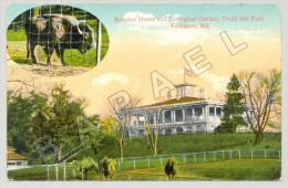 Baltimore (États-Unis) - Mansion House Et Zoological Garden (JS) - Animaux & Faune