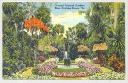 Daytona Beach (États-Unis) - Ormond Tropical Gardens - Photo R.H. Le Sesne - Circulé En 1940 (JS) - Daytona