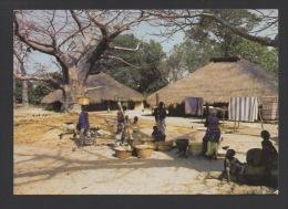 DF / SÉNÉGAL / VILLAGE DE CASAMANCE / FEMMES PILANT LE MIL - Senegal