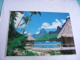 La Baie De Cook, Vue Du Club Bali - Hai à Moorea Photo Adolphe SYLVAIN - Tahiti