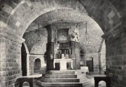 Assisi - Cartolina  BASILICA DI SAN FRANCESCO, LA TOMBA DEL SANTO, 1952 - OTTIMA M15 - Perugia