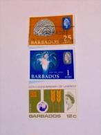 BARBADES / BARBADOS   1965-7  LOT #4 - Barbades (1966-...)