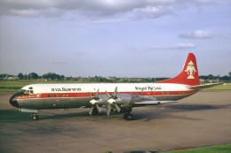 Aviation Postcard-605-ROYAL AIR LAO L-188 ELECTRA - 1946-....: Era Moderna
