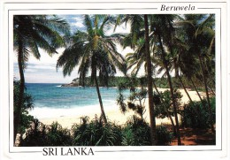 Sri Lanka - Beruwela ( 2x BIRD STAMP/TIMBRE - 1993) - Sri Lanka (Ceylon)