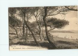 SAINT AYGULF : Sous Bois De La Lauvette. 2 Scans. Edition Steve - Saint-Aygulf