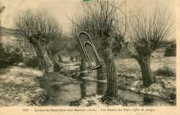 LONS LE SAUNIER LES BAINS -39- LES SAULES DU PARC EFFET DE NEIGE - Lons Le Saunier