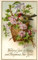 U 02 - UCCELLI - STAMPATA IN RILIEVO - CIRCOLATA 1910 - Pájaros